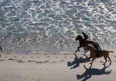paseos a caballo en Miengo